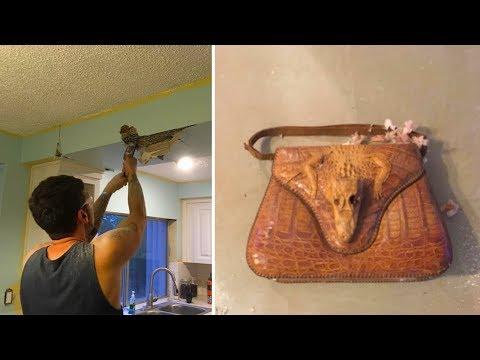 ما اكتشفه رجل يرمم سقف المطبخ