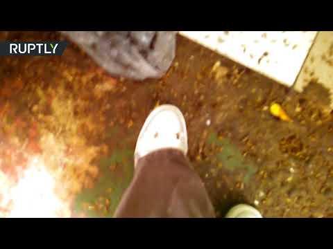 مزرعة صراصير في شقة عجوز روسية