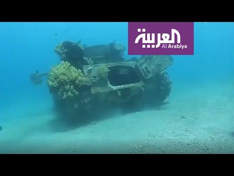 شاهد لوحة ساحرة من الأردن للشُعب المرجانية تخطف الأنظار