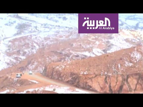 شاهد سكان تبوك وضواحيها يتجهون إلى جبل اللوز المغطى بالثلوج