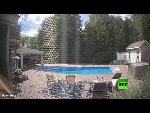 شاهد لقطات طريفة لدب يوقظ رجلًا كان مستلقيًا بالقرب من حمام سباحة