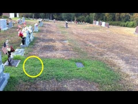 لم تستطع الأم فهم سر إخضرار قبر ابنها في البداية