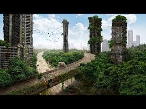 ماذا سيحدث للأرض إذا اختفى البشر قبل يوم القيامة