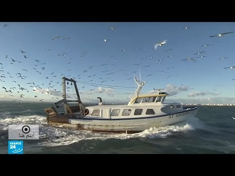 شاهد حقائق مُثيرة من عائلة صيادين في لو غرو دي روا جنوب فرنسا