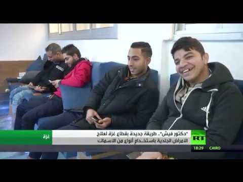 شاهدالأسماك وسيلة جديدة للعلاج في غزة