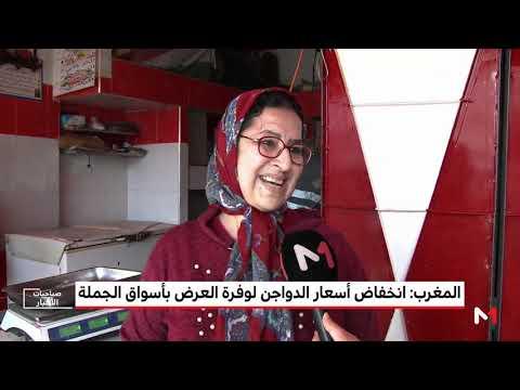 شاهد أسعار الدواجن تنخفض في أسواق الجملة المغربية