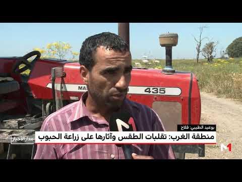 شاهد تضرر المحاصيل الزراعية في منطقة الغرب المغربي بسبب الطقس