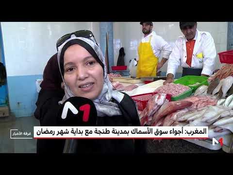 شاهد إقبال متزايد على الأسماك في مدينة طنجة المغربية