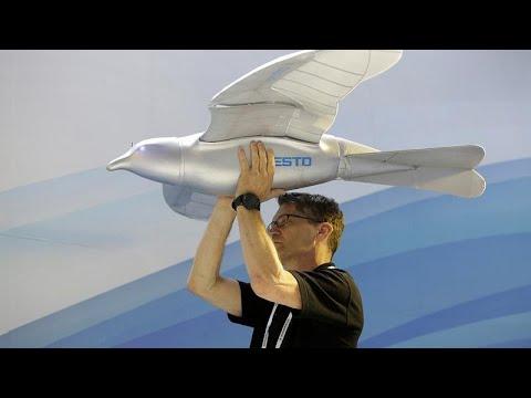 شاهد روبوت طائر يحلق فوق رؤوس زوار معرض الصين
