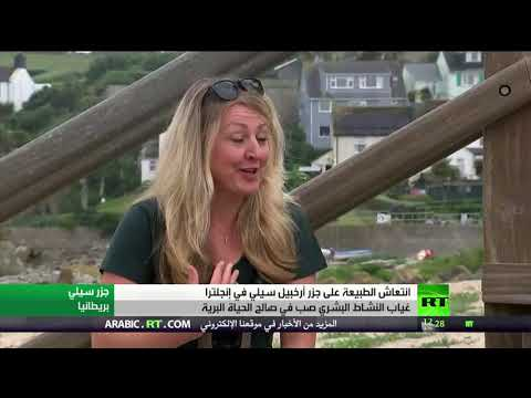 الوجه الآخر لـكورونا يُنعش الحياة الطبيعية في جزر إنجلترا