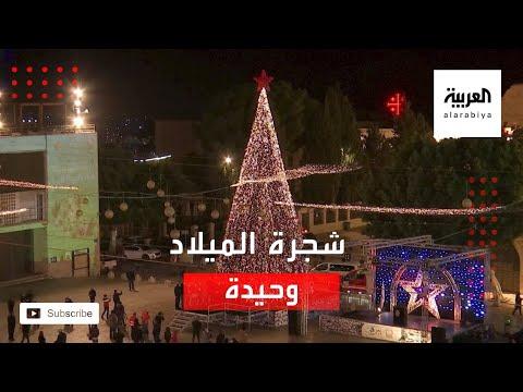 شاهد الوباء يحرم العالم من إضاءة شجرة الميلاد وتتركها وحيدة