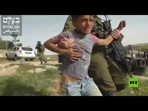 شاهد اعتقال أطفال قرب الخليل من قبل جيش الاحتلال الإسرائيلي